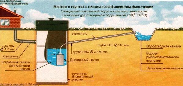 Принцип работы биологической мини-станции