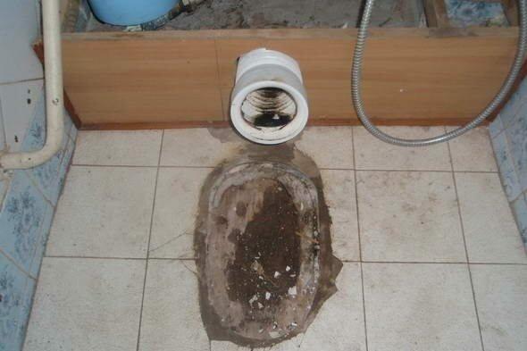 Сгнившая доска удаляется, пол выравнивается бетоном.